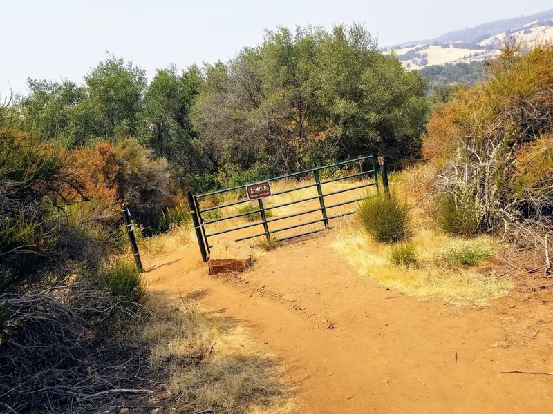 This gate is a good landmark when looking for the Acorn Trail junction just downhill and left of here (north and west).