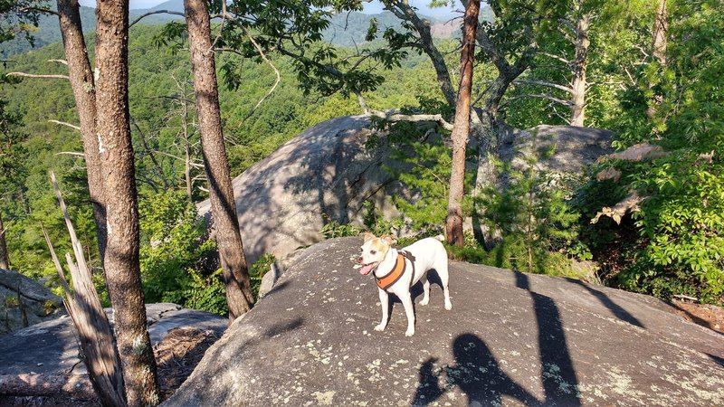 Atop the summit of Big Rock.