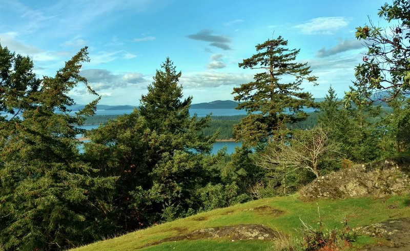 Looking north-northwest, out over the San Juan Islands to Canada from the Young Hill Overlook.