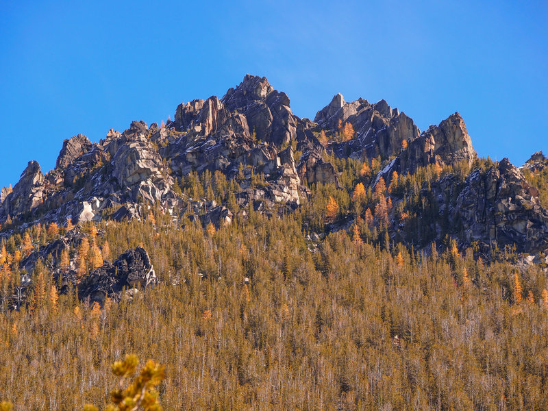 Golden larches on the east side of Colchuck Lake (mid October)