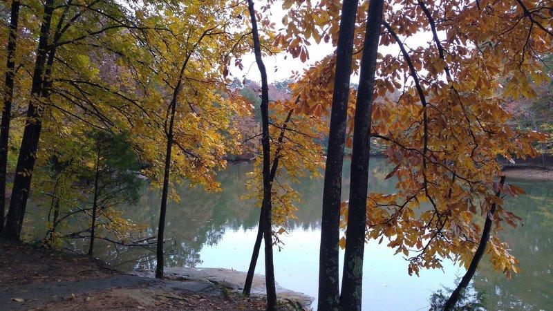 Crisp Fall Day on Alder Trail