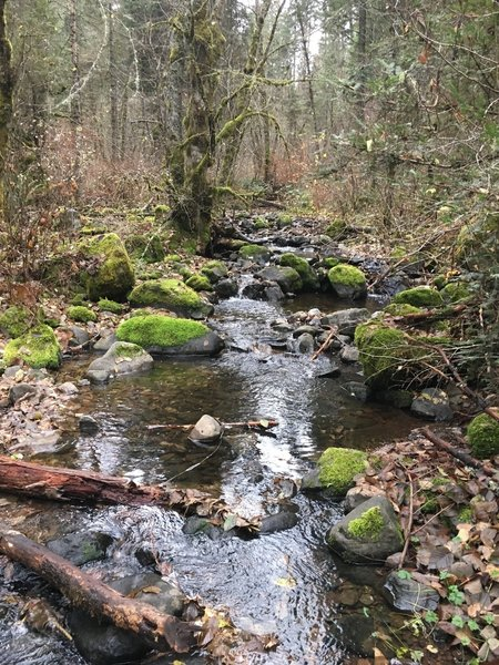 West Tiger Creek