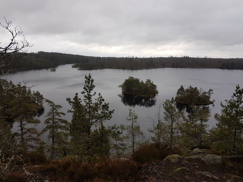 Looking down at the Lake Stensjön from the ancient castle of Stensjöborg.