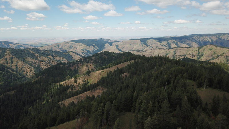 Tiger Ridge looking to the NW. West Tiger Creek to the west. The trail is visible in the lower right of the photo, Tiger Canyon Road also visible