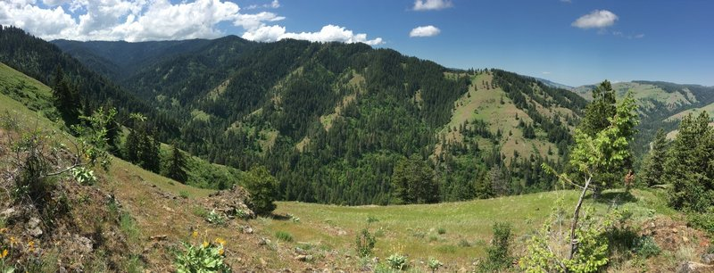 Tiger Ridge pano looking west into West Tiger Creek canyon