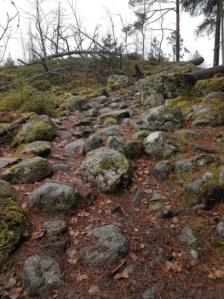 Wet, slippery stones on the trail, be aware!
