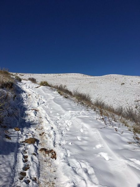 Snow and ice on trail