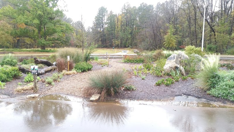 Butterfly garden near the entrance to the paved multi-use trail