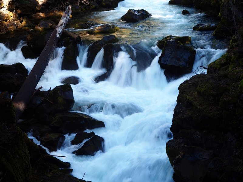 The Rogue River after it emerges from subterranean travel in a lava tube