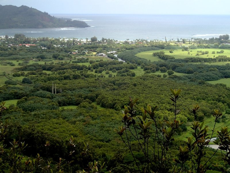 Down to Hanalei Bay