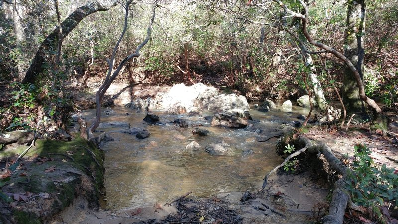 One of many creek/stream crossings on the Uwharrie National Recreation Trail.