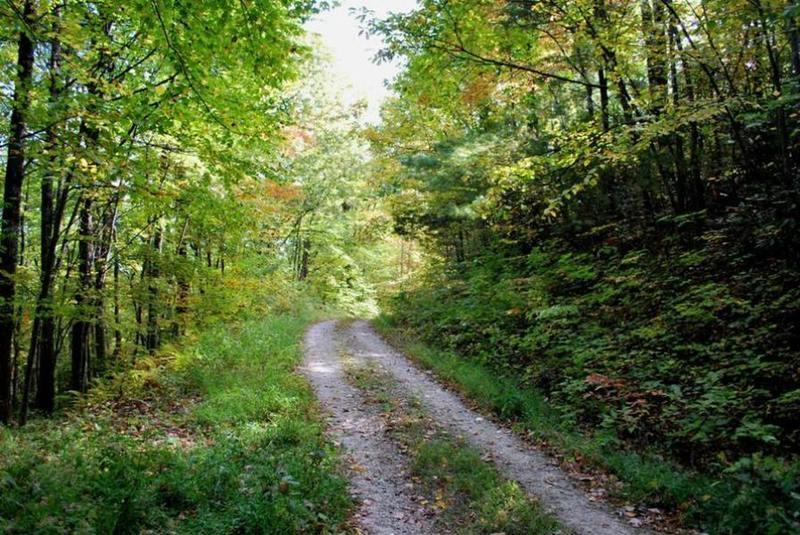 Doubletrack on Schoolhouse Ridge Road