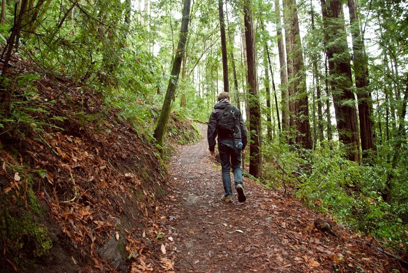 Hiking the Sprig Trail