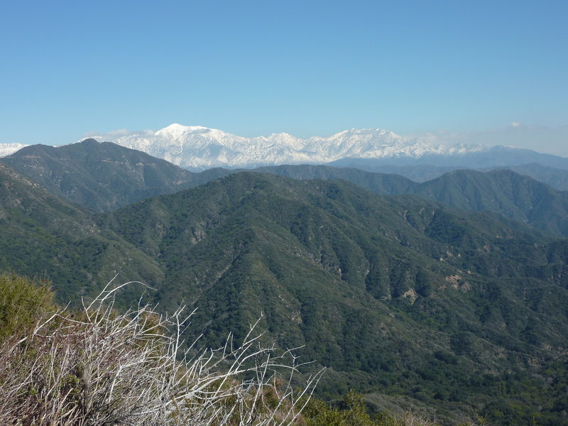 View of Mt. Baldy and Upper Fish Creek from White Saddle.