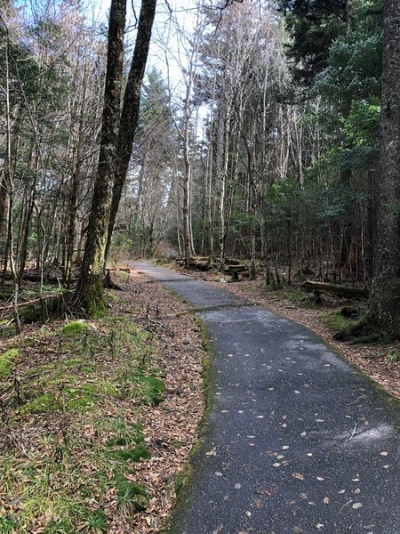 Initial paved portion of trail.