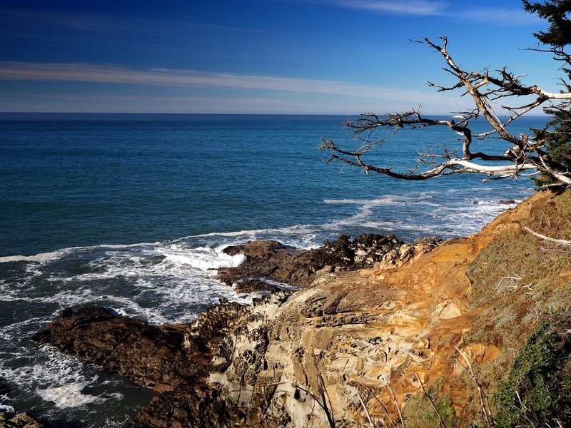 Where the bedrock of Cape Sebastian is exposed to the sea