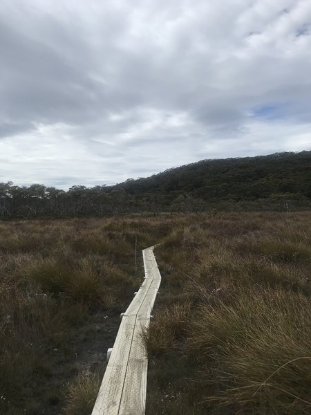Examples of the boarded trail through the open grassland.