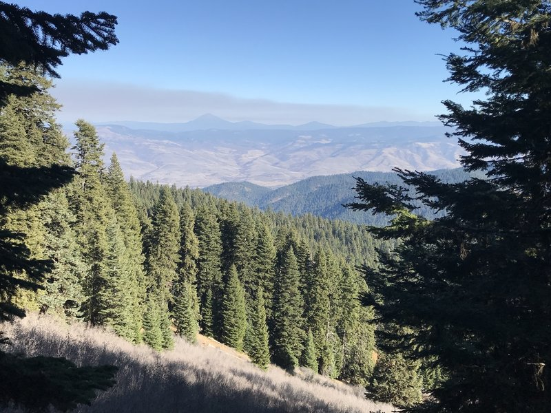 a view while hiking down Wagner Glade Trail