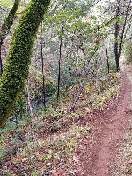 Tinker's Cutoff is short, sweet and steep.