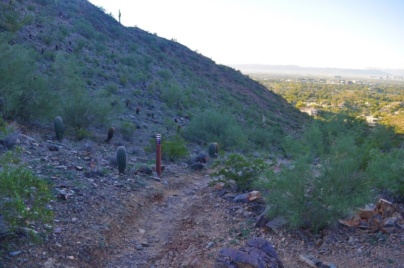From the junction at the pass, the 202 Mohave Connector heads down the valley.