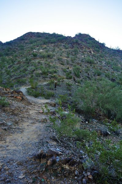 From the pass, the preferred route is up the switchbacks to the east, to a spectacular summit.
