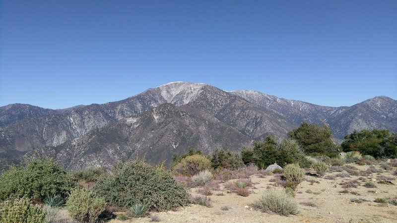 View of Mt. Baldy from Sunset Peak.