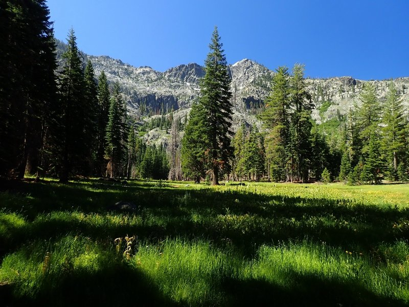One of the meadows on the way to Hogan Lake.