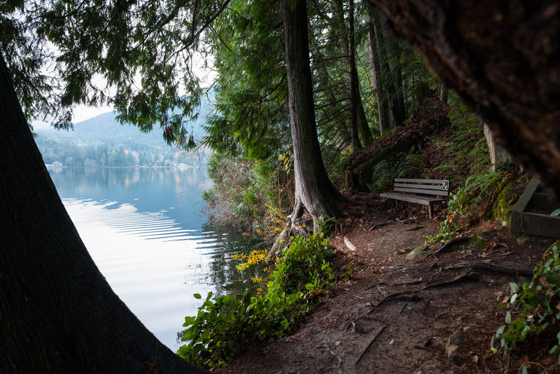 A tranquil spot to take a break along the Lakeshore Trail.