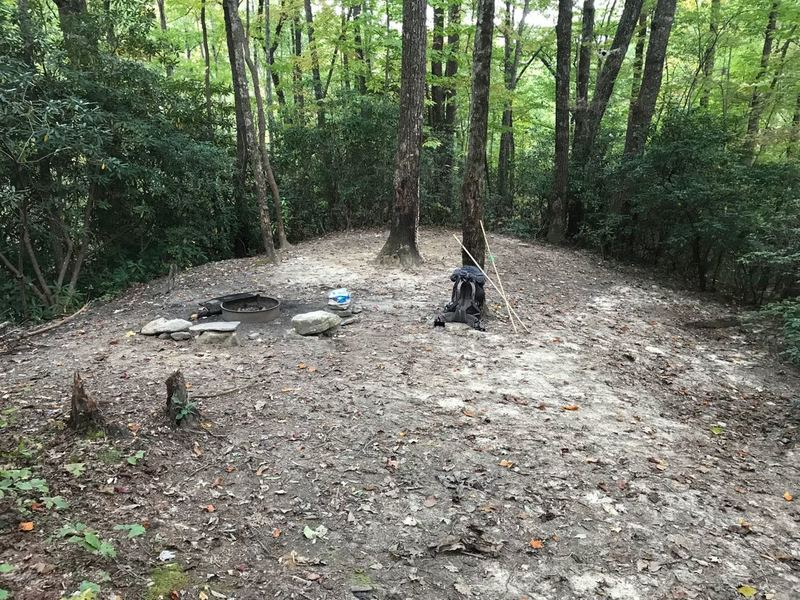 This is camp #15, #14 looks similar, both with small stream crossings before camp sites along Jones Gap Trail which are only campsites with fire permitted, all are pet friendly campsites in area . Used on solo hike of multi-day loop in Jones and Caesars.