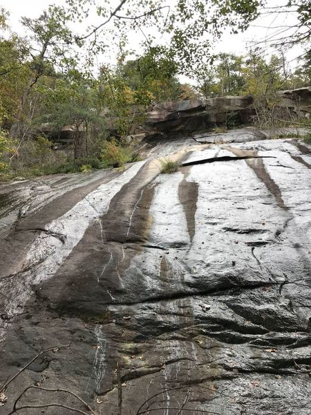 There will be a lot of slabs like this along the trail, some with a little water running down it which you'll have to work around with little paths or cross following the trail but amazing to look at.