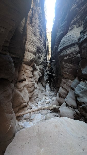 One of many deep, narrow sections of the Bull Valley Gorge.