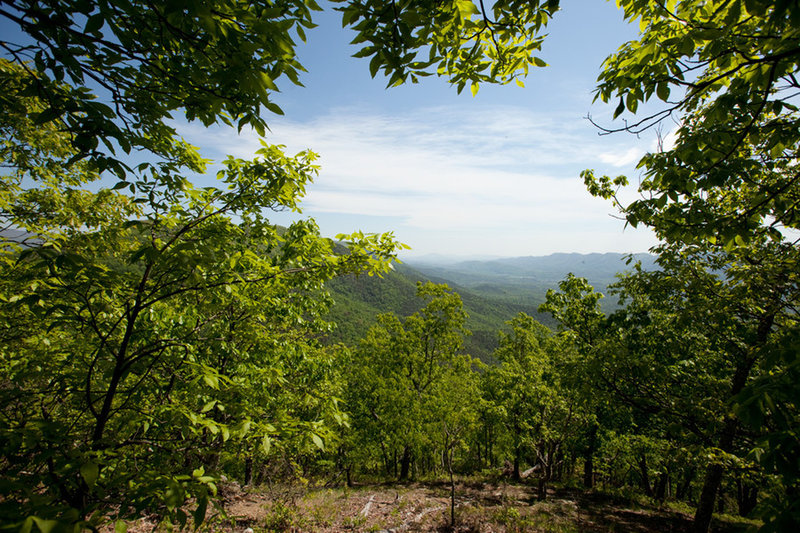 Great views to the west into George Washington National Forest