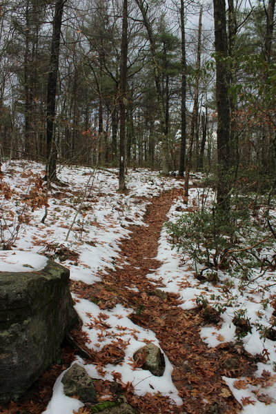 M & M Trail
