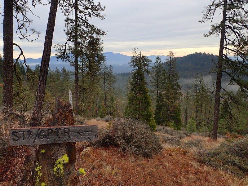 Near where the Stringer Gap Trail meets the Bolt Mountain Trail.