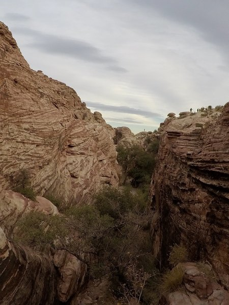 One of the many canyons that can be found in the Calico Hills.