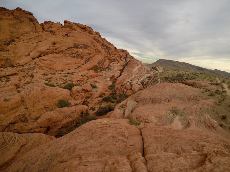 Red Rock Canyon is on the top 10 climbing destinations in the U.S., it is easy to see why.