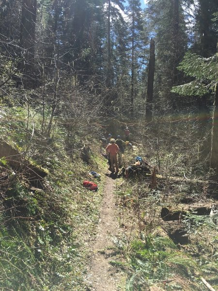 Blues Crew clearing trail