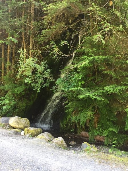 Small waterfalls and streams are just off the trail, offering an opportunity to refill (treatment recommended) or just cool off!