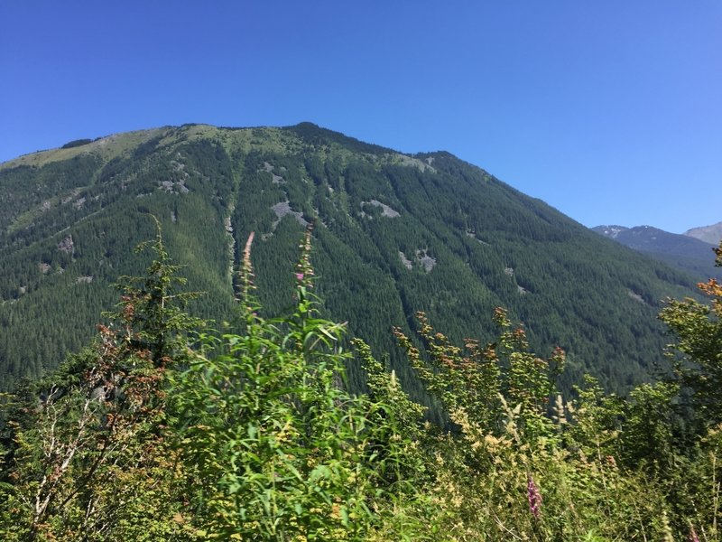 Great views abound from the trail of all the mountains along the I-90 corridor. This is likely Bandera Mountain.