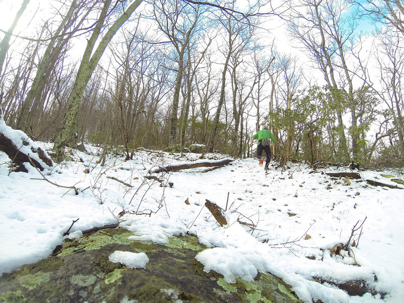 Terrapin Mountain main trail up the East Ridge. GoPro photo. Very steep!