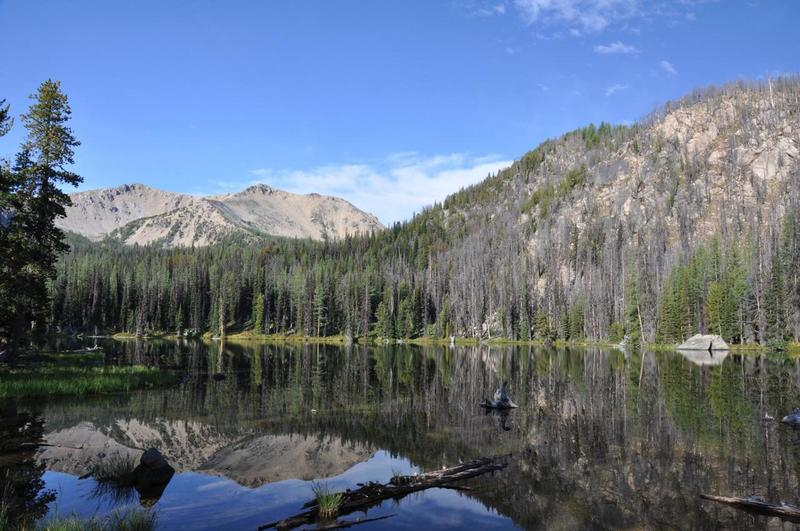 Lower fox lake