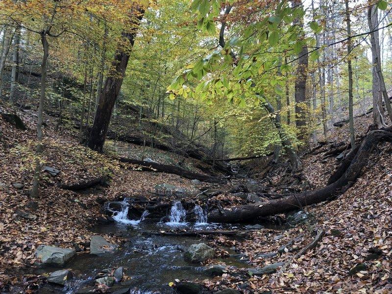 Small stream waterfalls along the Melvin C. Hazen Trail, Nov. 2018.