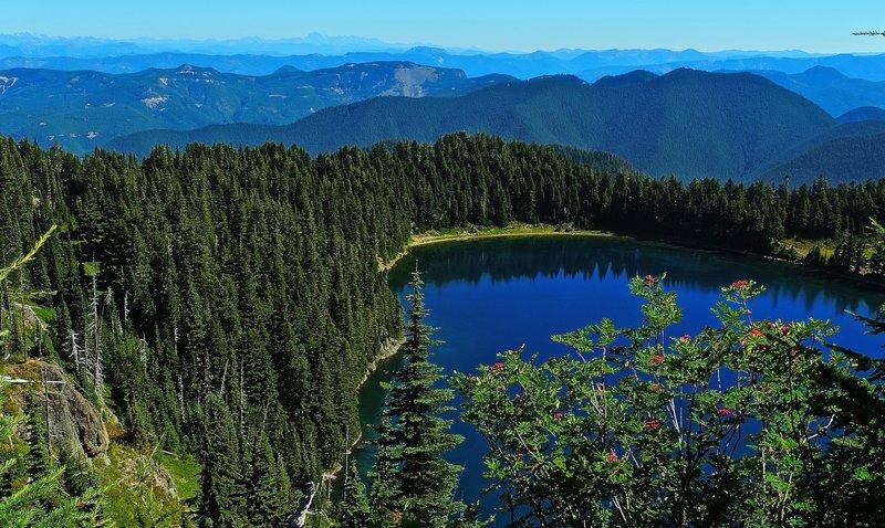 Mountain Ash and Summit Lake