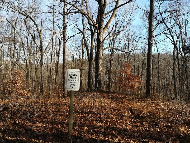 A small cemetery dedicated to the Hays on Grubb Ridge Trail. Grave markers are near the thicker trees behind the sign.