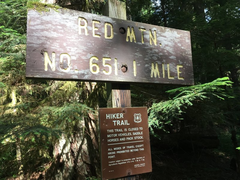 Trail sign to the Red Mountain Lookout, where the official trail stops and a bootpath continues to the summit of Painted Mountain