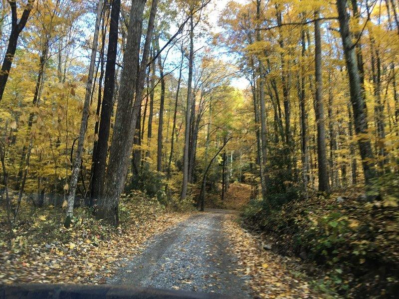 Viking Mountain Road.