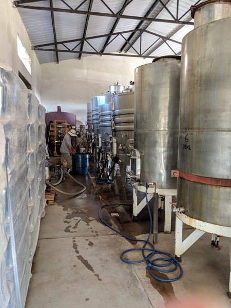 Fermenting tanks at Taquil.