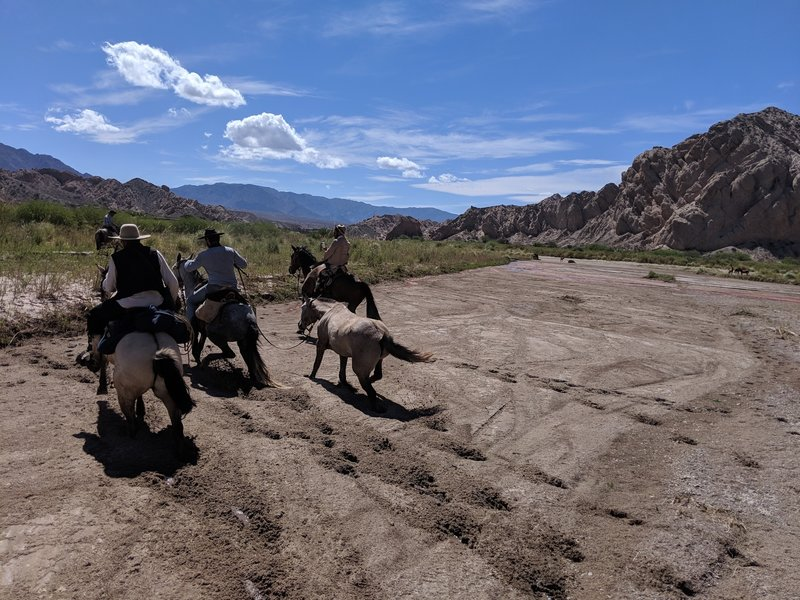 Quick mud in the Calchaquí River.