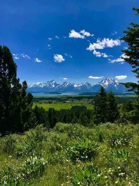 Hiking the Emma Matilda Lake Trail in Grand Teton National Park, June 2018.