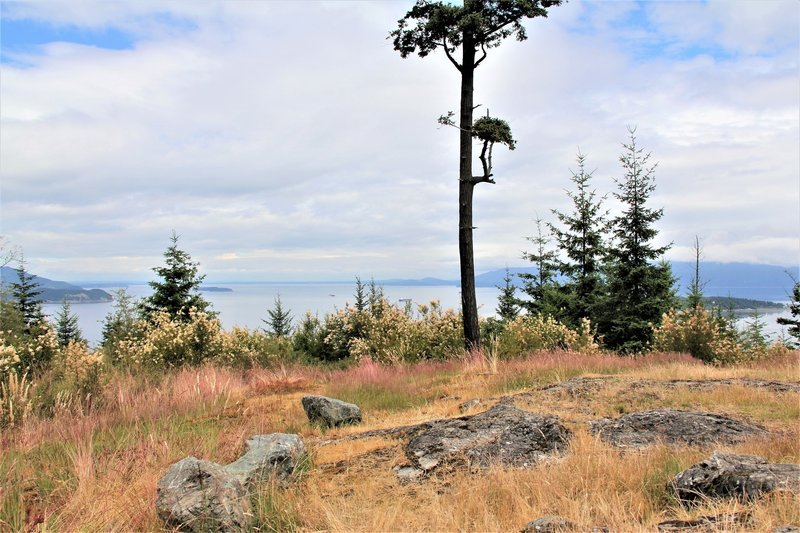 The Sentinal atop Guemes Mountain looking southeast.